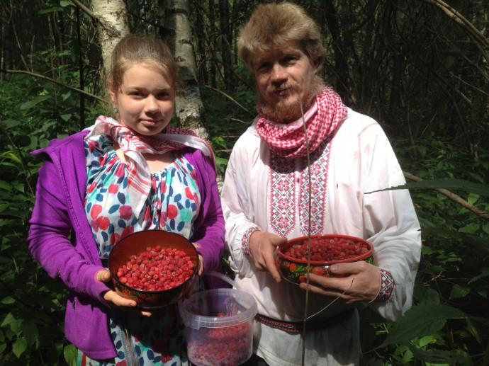 Сбор лесной малины